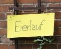 Altdorffest 2012_8